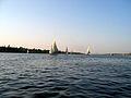 Sails on Nile near Aswen.jpg
