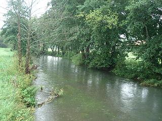 Schwarze Laber river in Germany