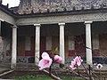 Scorcio di storia romana tra ciliegio in fiore.jpg