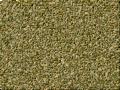 Scratch BG peeloff 36.png