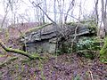 Scrub taking over the old quarry beow Ellwood - Feb 2014 - panoramio.jpg