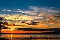 Seagulls on sunset flying over the Waskesiu Lake in Prince Albert National Park Saskatchewan, Canada.jpg