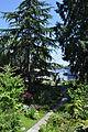 Seattle - garden on Portage Bay Place E.jpg