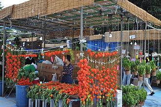 Physalis alkekengi - Hozuki Market in Japan