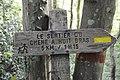 Sentier du Chêne huit bras balisage en décrépitude.jpg