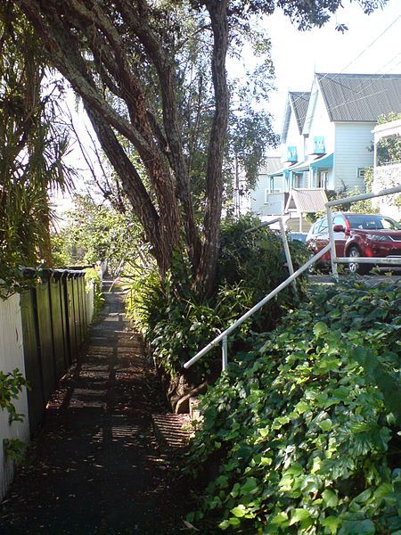 File:Separated Footpath In Parnell, Auckland.jpg