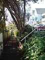 Separated Footpath In Parnell, Auckland.jpg