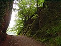 Severn Way, Blackstone Rock - geograph.org.uk - 204736.jpg