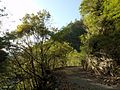 Shimokuwahara, Shimokitayama, Yoshino District, Nara Prefecture 639-3807, Japan - panoramio.jpg