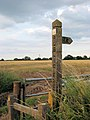 Sign and Mast - geograph.org.uk - 516827.jpg