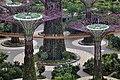 Singapore - panoramio (131).jpg