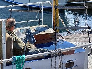 Skipper taking a break.jpg