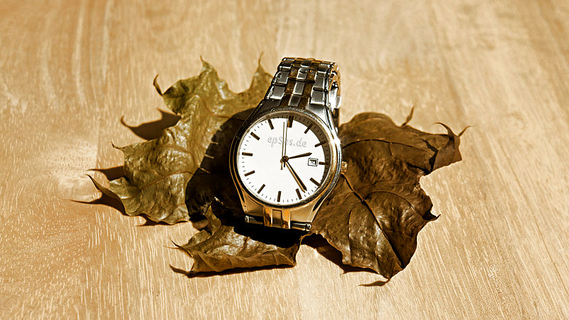 File:Slow Time in Wrist Watch on Dry Leaf.jpg