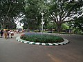 Snap from Lalbagh Flower Show Aug 2013 7830.JPG