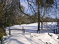 Snow covered meadow - Warley Place - geograph.org.uk - 1146516.jpg