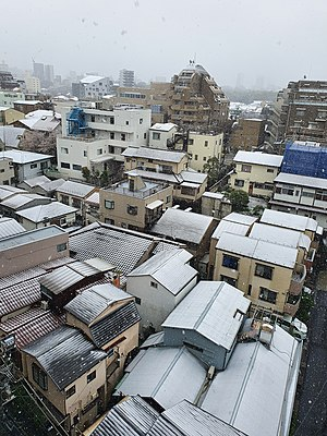 Snow in Tokyo on March 29.jpeg