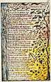 Songs of Innocence and of Experience, copy L, 1795 (Yale Center for British Art) 28-27 100 On Anothers Sorrow.jpg