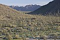 Sonoran Desert NM (9406686984).jpg