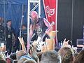 Soundwave 2014 Five Finger Death Punch 2.jpg