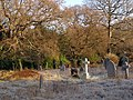 Southampton Old Cemetery - geograph.org.uk - 637337.jpg