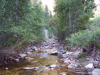 Stream - A rocky creek in Spearfish Canyon, South Dakota, US