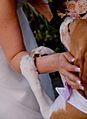 Sposa e cane.jpg