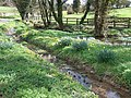 Spring, Pool and Stream , Gagingwell - geograph.org.uk - 154249.jpg