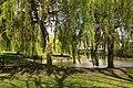 Spring in Epsom (7197743042).jpg