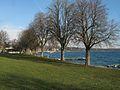 St-Prex-Lausanne-Ouchy (12.12.12) 42 (8270463338).jpg