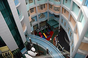 Starship Children's Health - Main Starship building atrium from the top.