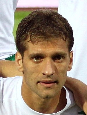 Stiliyan Petrov - Petrov in 2011