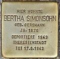 Stolperstein für Bertha Simonsohn (Potsdam).jpg