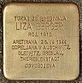 Stolperstein für Liza Berger (Murska Sobota).jpg