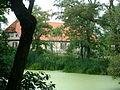 Strachówko - park dworski (ziel).JPG