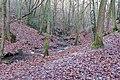 Stream Blanc-Gravier in Sart-Tilman - downstream.jpg