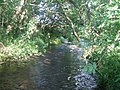 Stream near Duck Street Farm 2 - geograph.org.uk - 908353.jpg