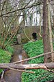 Stream under Gribble Bridge Lane - geograph.org.uk - 397496.jpg