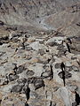 Stromatolites, Concretions at Hiker's Point.jpg