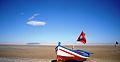 Sud saharien tunisien.jpg
