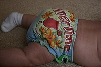 Summertime Diaper (4104010667).jpg