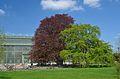 Sundial House, Schönbrunn 02.jpg
