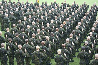 Military reserve force - Finnish conscripts giving their military oath.