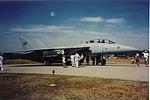 THE F-14 Tomcat - Scan (465330313).jpg