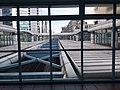 TW Taiwan 台北市 Taipei 大安區 Da'an District 忠孝復興車站 Zhongxiao Fuxing Station August 2019 SSG 14.jpg