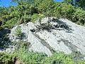 Talaingod-San Fernando Road - panoramio (92).jpg