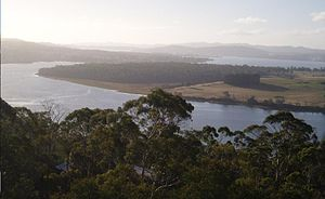 Tamar River vom Brady's Lookout (bei Exeter)