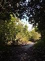 Tangkiling Nature 02.jpg