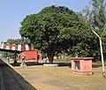 Tankuppa Railway Station.JPG