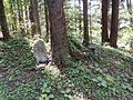 Tazawa, Hachimantai, Iwate Prefecture 028-7601, Japan - panoramio (3).jpg