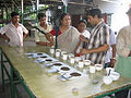 Tea Testing at 100 years old Tea Garden of Dooars.jpg
